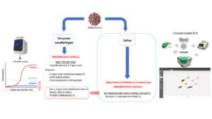 diagnosi molecolare covid - Aging Project
